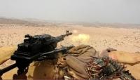 قوات الجيش تخوض معارك عنيفة في ثلاث مديريات بمحافظة الجوف