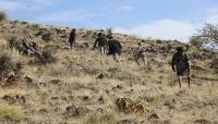 قوات الجيش تسيطر على تباب إستراتيجية غرب تعز