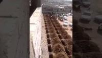 حفارو القبور في اليمن تحت الضغط وسط ارتفاع أعداد الوفيات