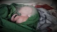 """طفلها الذي كانت حامل به بقي على قيد الحياة.. وفاة """"أم جهاد"""" متأثرةً بإصابتها بقصف للحوثيين في تعز"""