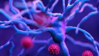 كيف يؤثر فيروس كورونا على الجهاز العصبي؟