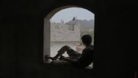"""سيناتور أمريكي: نستطيع أن نساعد """"غريفيث""""في إنهاءحرب اليمن ويجب أن تكون أولوية لـ """"بايدن"""" (ترجمة)"""