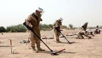 الجيش الوطني يعلن تفكيك شبكة ألغام حوثية شمالي الجوف