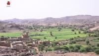 منظمة: مليشيا الحوثي تمارس أعمالا انتقامية ضد أبناء العبدية جنوب مأرب